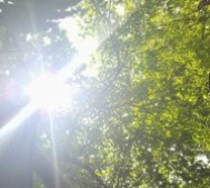 6 cách bảo vệ ôtô trời nắng nóng
